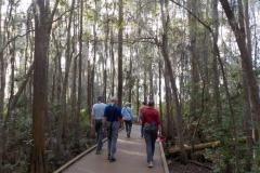 chesser-island-boardwalk-suwanee-canal-rec-area_49133644977_o